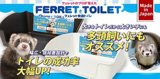 フェレットトイレ